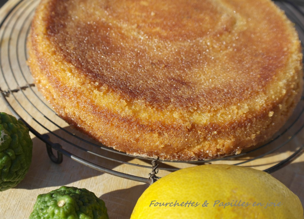 Gâteau fondant au citron ( The lemon cake )