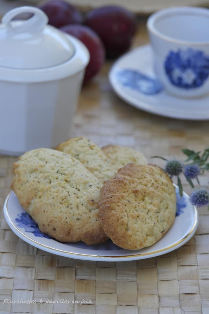Biscuits au citron et fenouil sauvage.